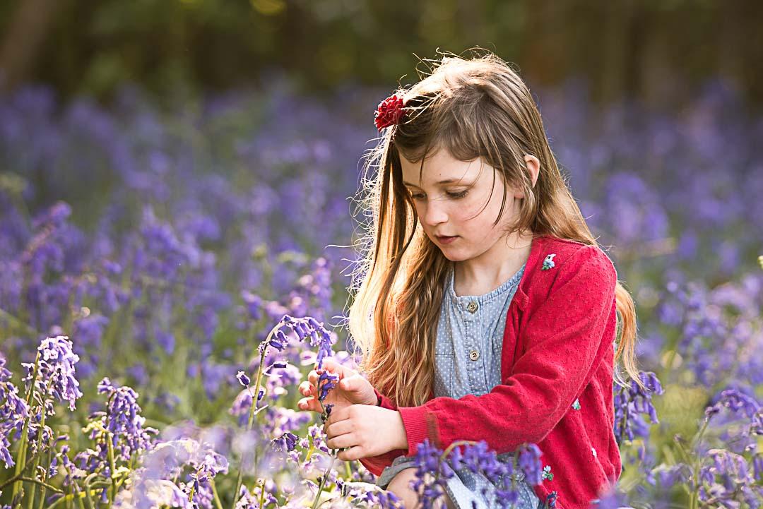 Little girl in the bluebells at golden hour
