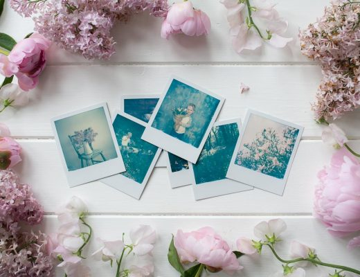 instant film photography - polaroid collection with spring flowers
