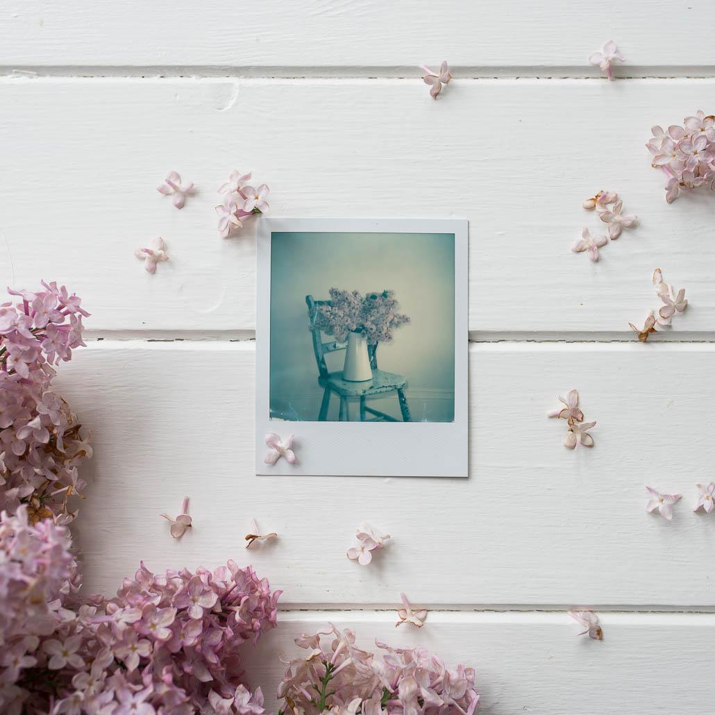 Polaroid instant film photography spring lilacs