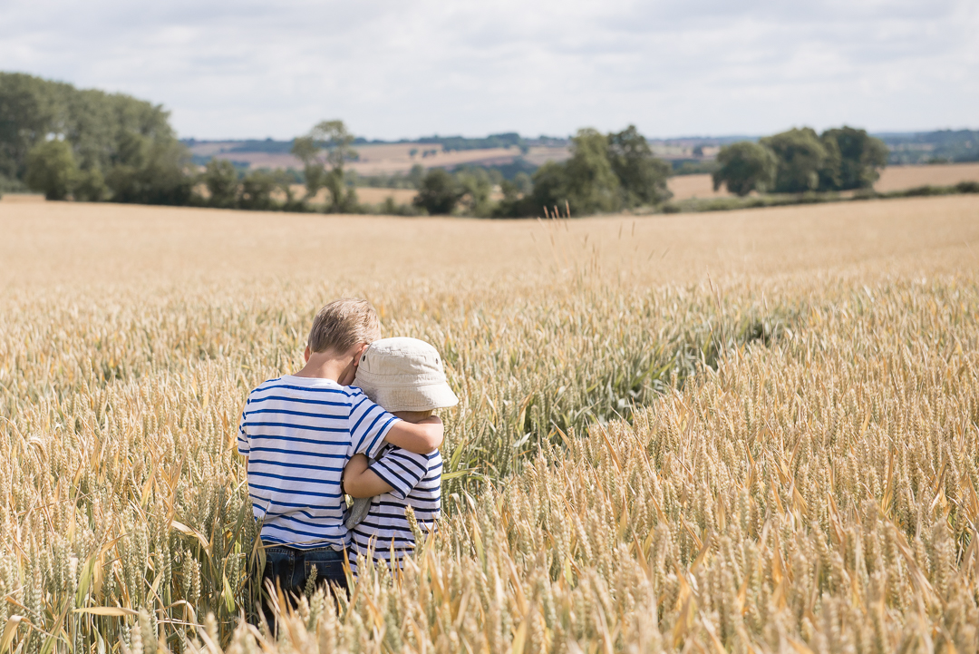 little boys cuddle in summer wheat field