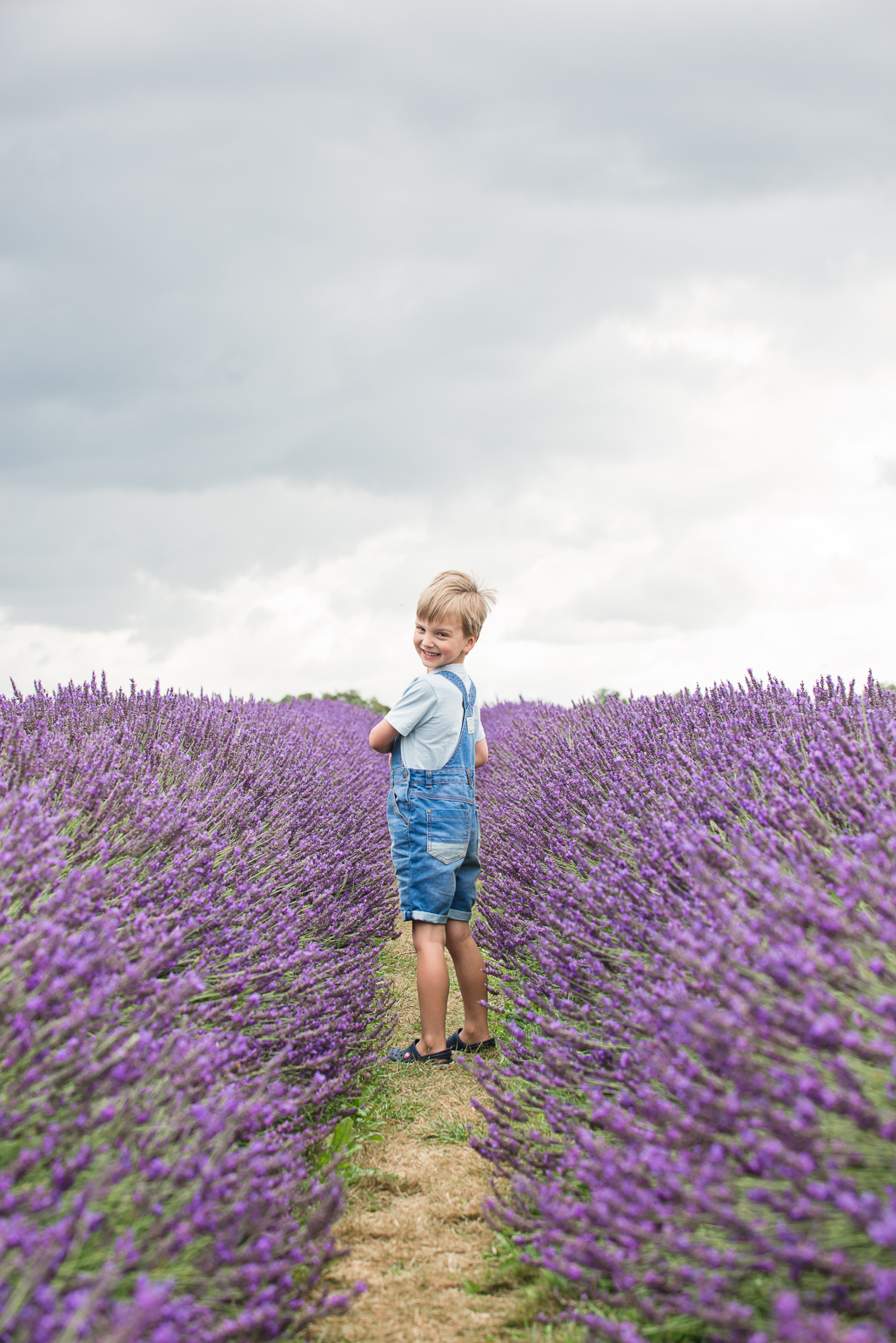 memories of 2016 little boy in lavender