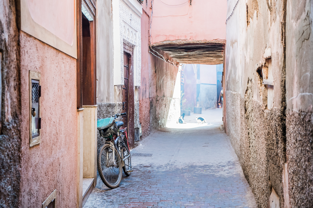the old medina, Marrakesh