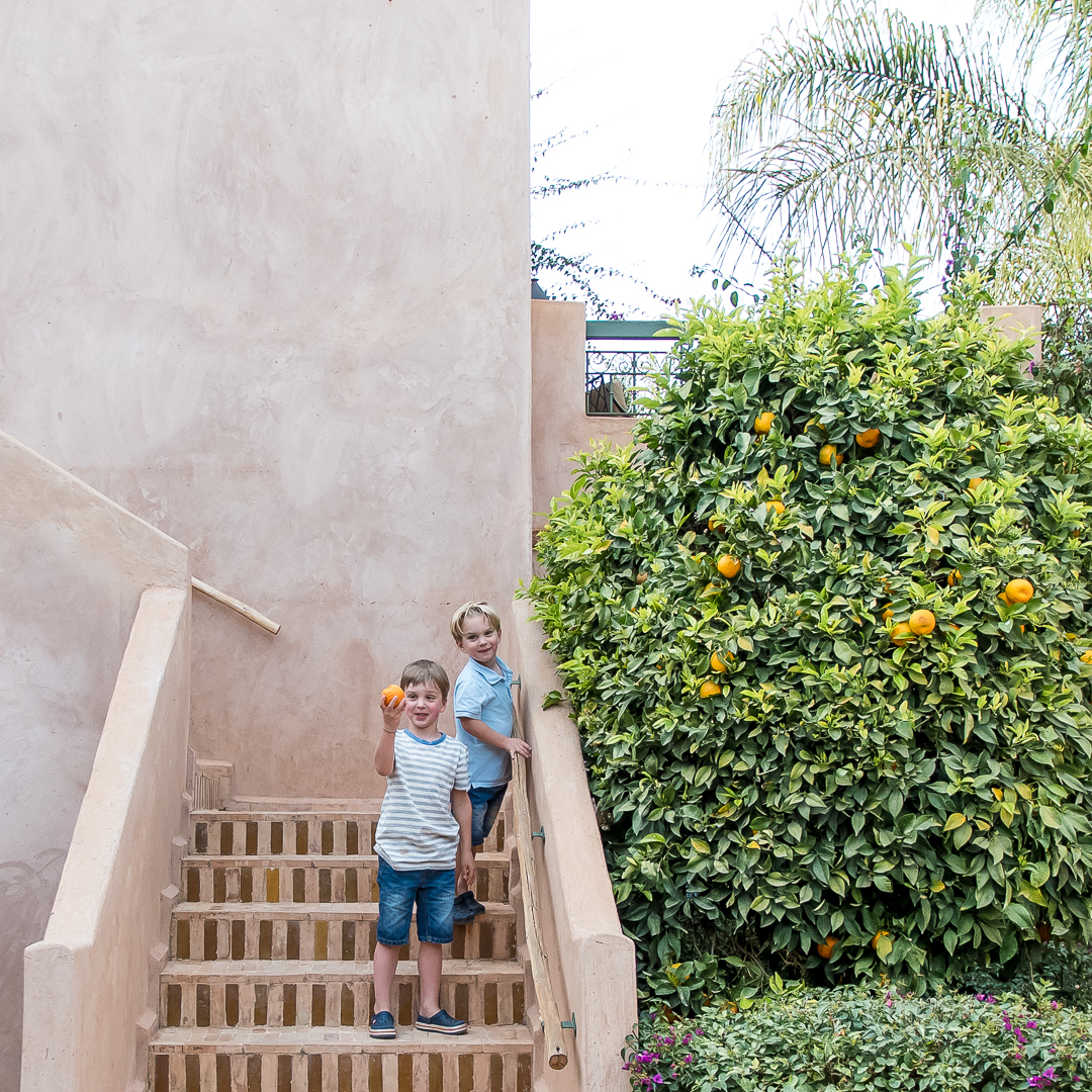 little boys and oranges, club med marrakesh