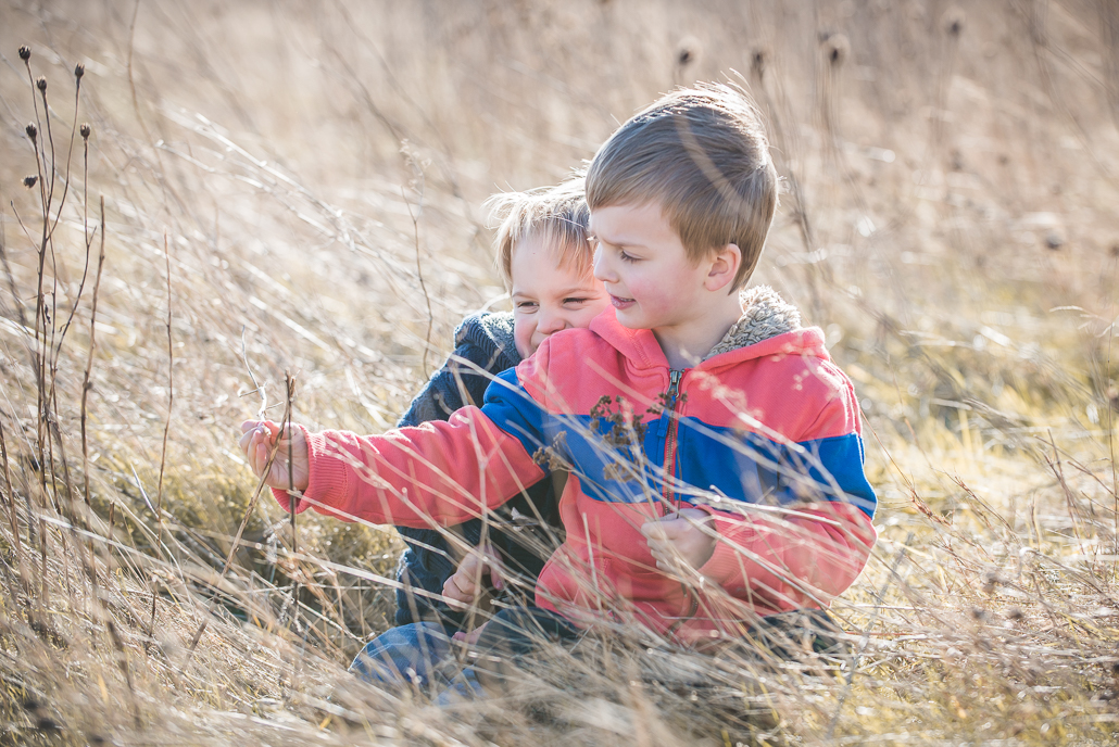 little boys in a field of grass, family portraiture and photographing children