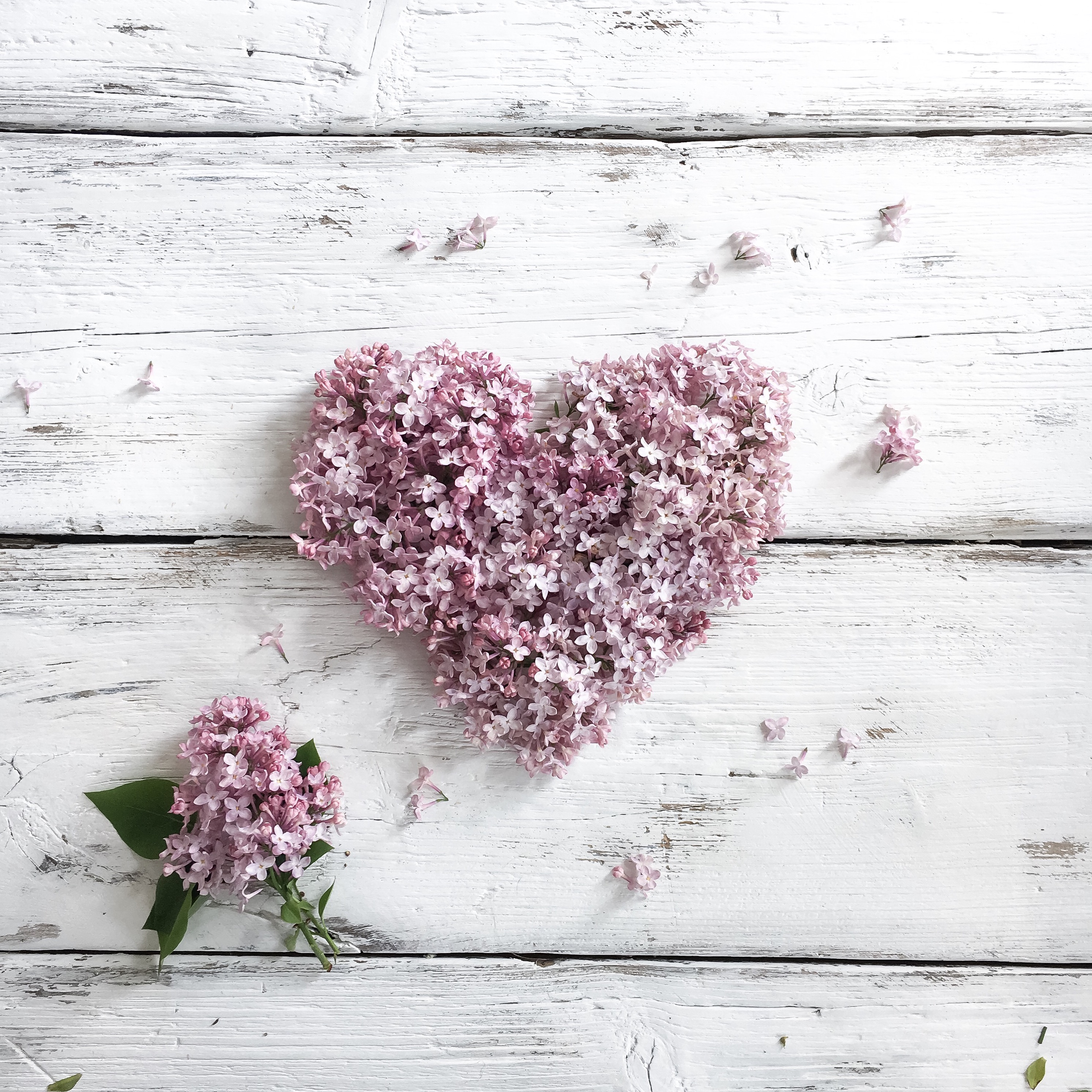 lilac heart Instagram clichés