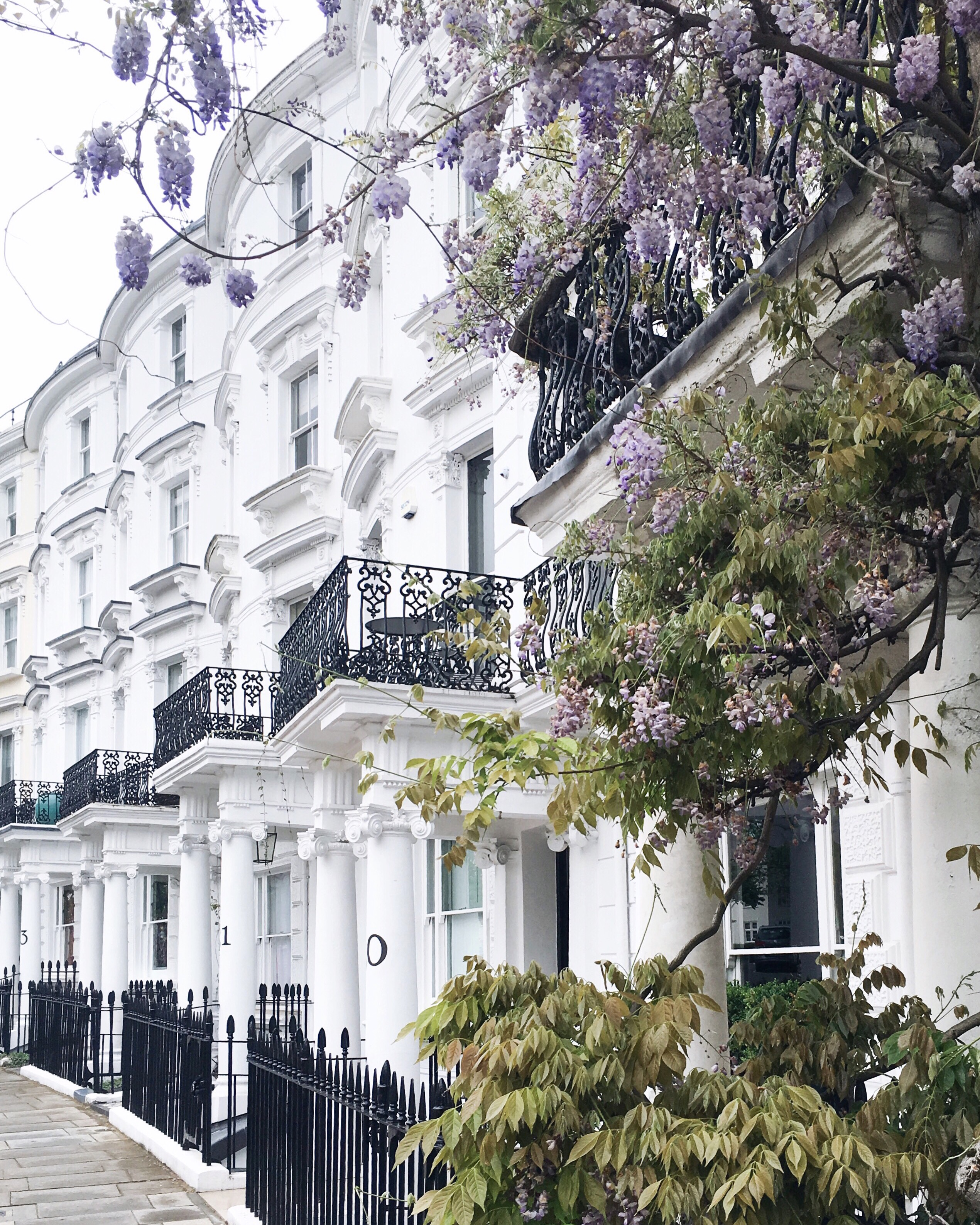London houses with wisteria - Instagram clichés