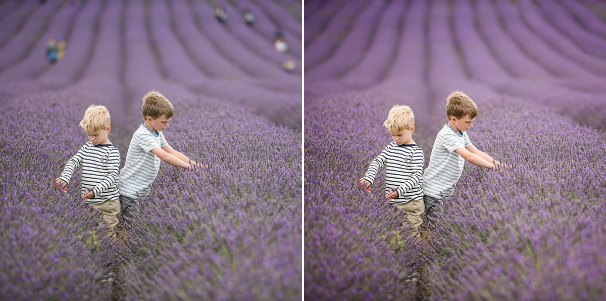 with influence comes responsibility - little boys in lavender fields