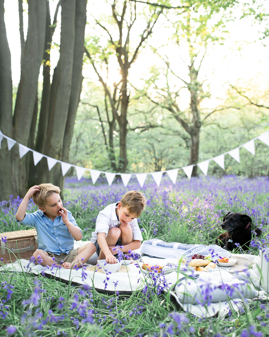 a picnic in the bluebells