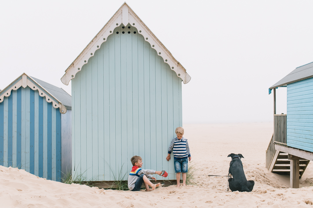 little boys and their puppy at wells next the sea