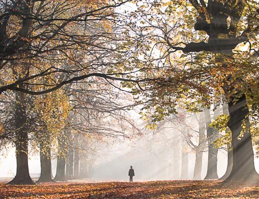 Magical morning Northampton