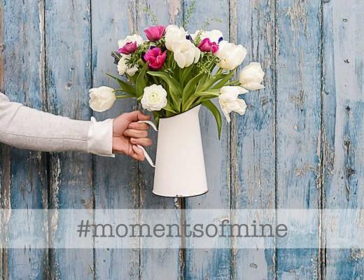 #momentofmine Instagram hannahargyle